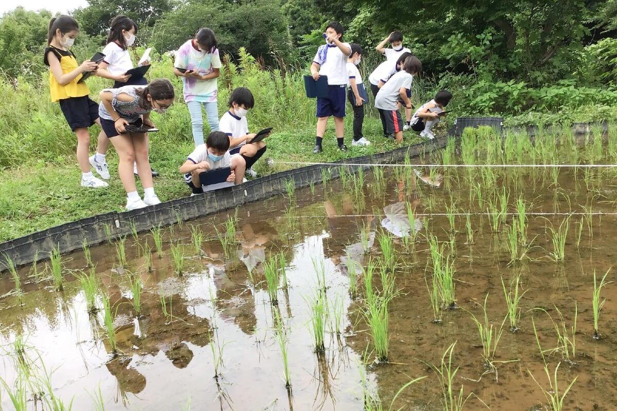 啓明学園の自然豊かなキャンパスで学ぶ子どもたち